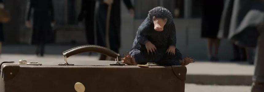 神奇动物:格林德沃之罪-134分钟,这是我看过最长的预告片